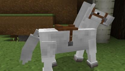 лошадь2jpg