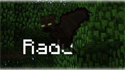 Pet-Bat-Mod-2_min