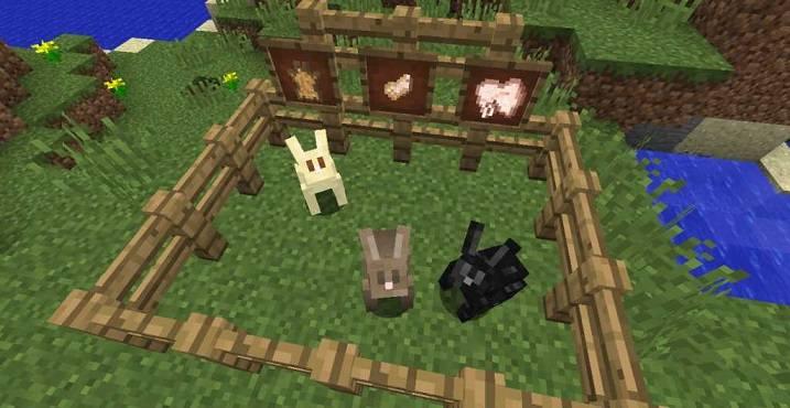 Как выглядят кролики в загоне